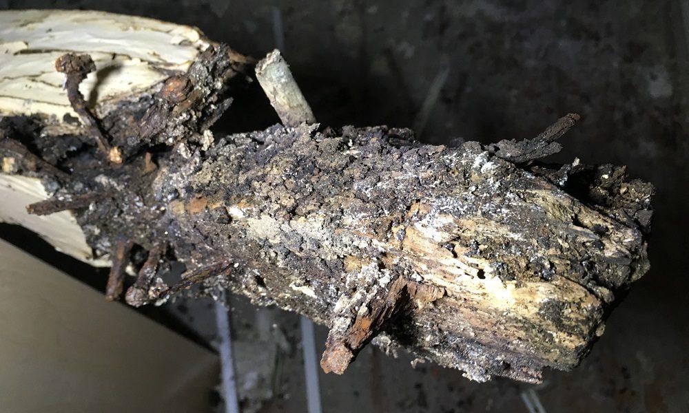 degradação em estruturas de madeira